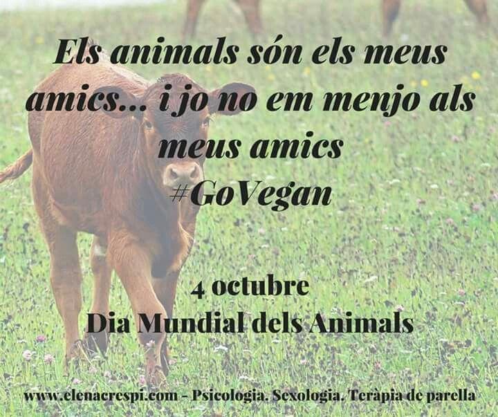[Dia Mundial dels Animals] T'has plantejat mai que els humans no necessitem matar ni explotar animals per viure? #GoVegan #PsicoVegan www.elenacrespi.com