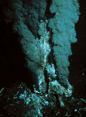 110 best images about 熱水噴出孔(hydrothermal vents) on Pinterest