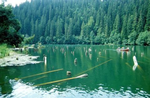 """Gyilkos tó - Erdély / """"Killer lake"""" Erdély, Transylvania, Eastern-Carpathians"""