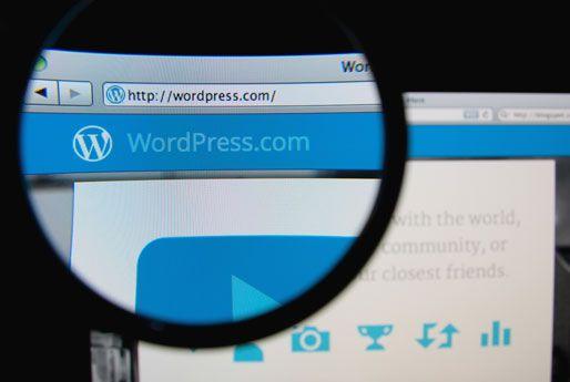 Girişimciler için Wordpress Eklentiler  Cloudnames Türkiye Blogu