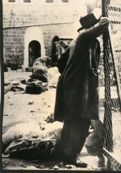 79 best history 1920s images on pinterest history american 1929 hebron massacre began when a yeshiva student shmuel rosenholtz was attacked and stabbed fandeluxe Gallery