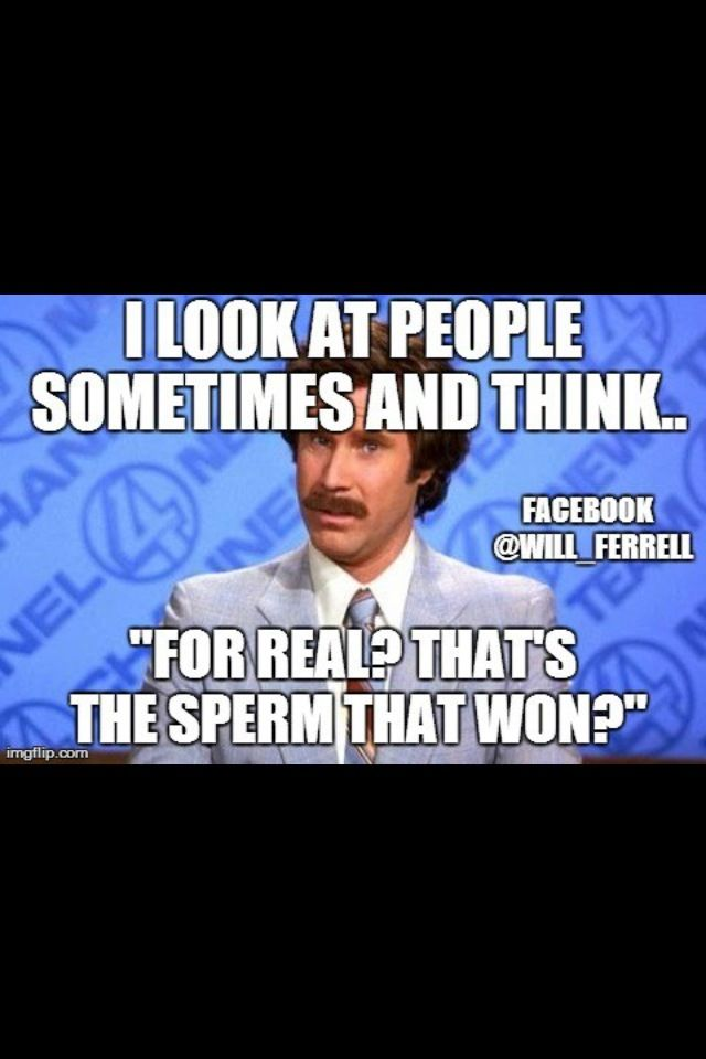 Will Ferrell Ron Burgundy funny