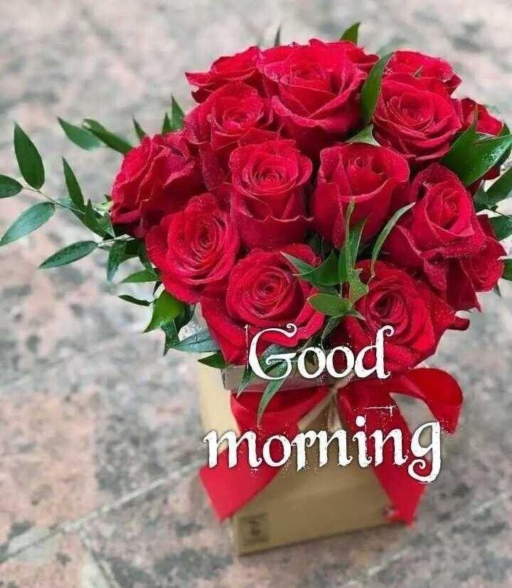 Pin By Sarika On Greetings Good Morning Flowers Good Morning Flowers Rose Good Morning Roses