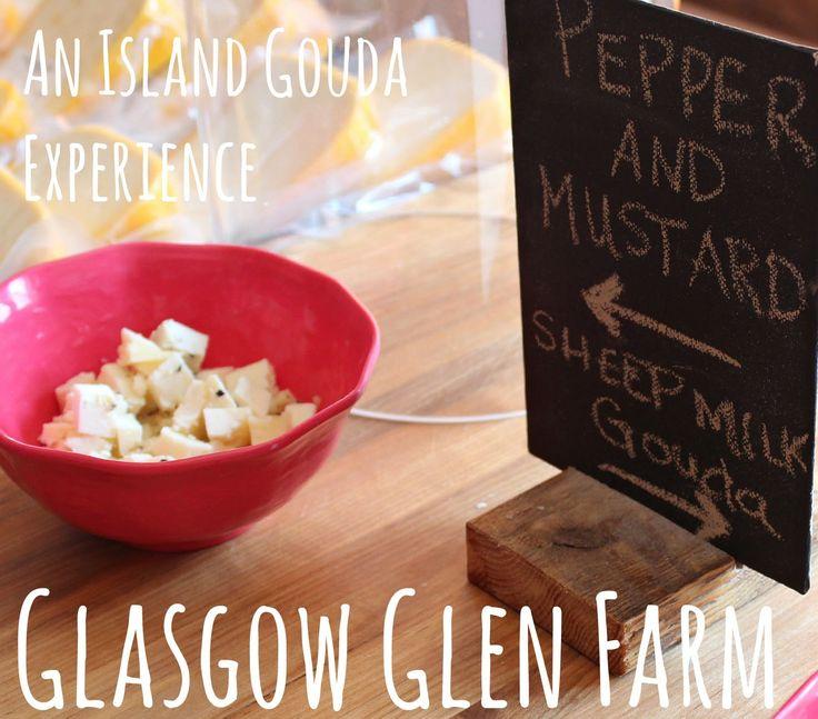 Life on a Canadian Island: Glasgow Glen Farm ~ An Island Gouda Experience