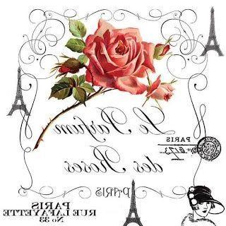 Transf rosa paris