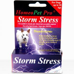 Relief For Small Dogs With Anxiety - Storm Stress