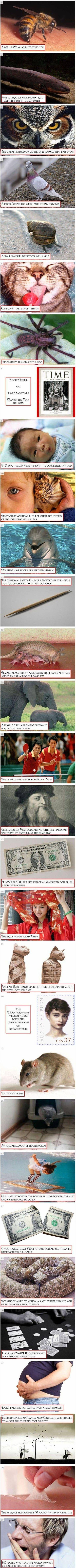 Hahahhaha so interesting.