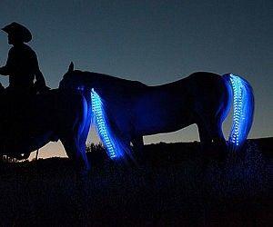 Koňský LED ocas 4 080 Kč