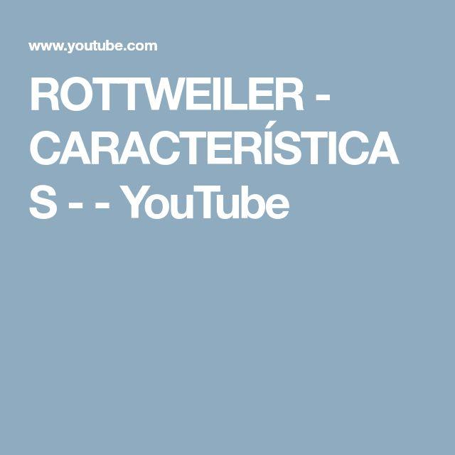 ROTTWEILER - CARACTERÍSTICAS - - YouTube