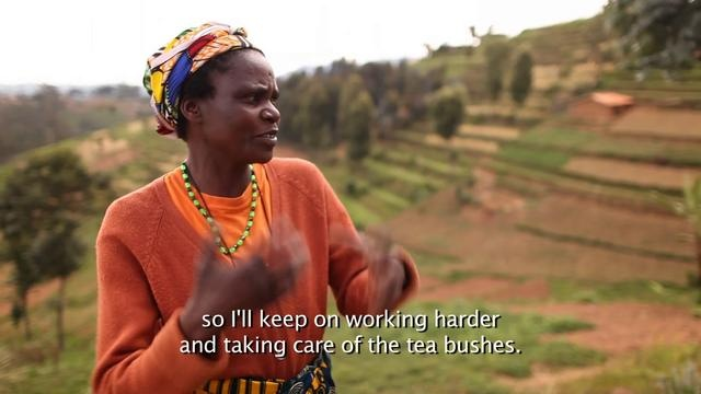 From Farm to Cup: A Tea Farmer's Perspective by Rainforest Alliance. Sikobihora Marie Francoise, a tea farmer and member of Kobacyamu cooperative, describes the benefits of Rainforest Alliance certification. She is one of 10,000 smallholder tea farmers in Rwanda who has learned to produce a greener cup of tea with the help of the Rainforest Alliance.