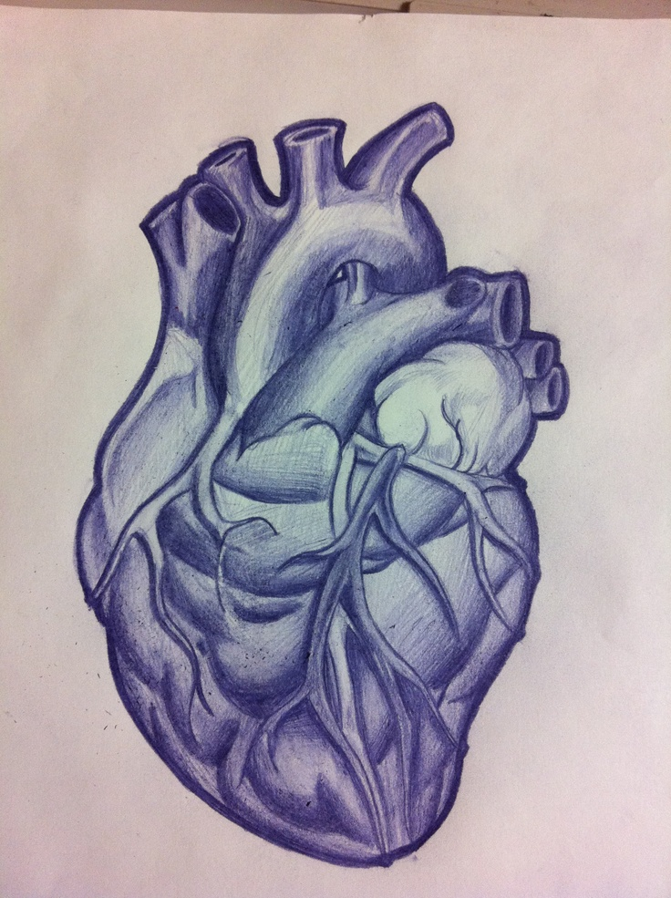 Anatomical Heart on my chest, above my left breast