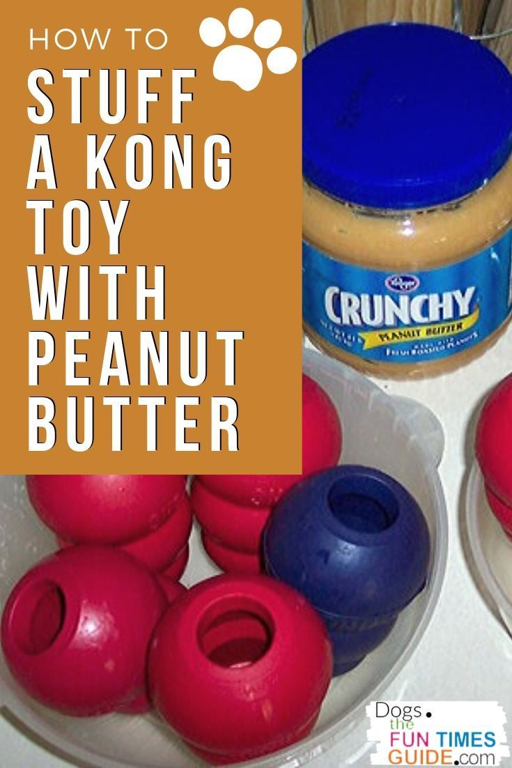 How To Stuff A Kong Toy For Dogs My Best Kong Stuffing Tips