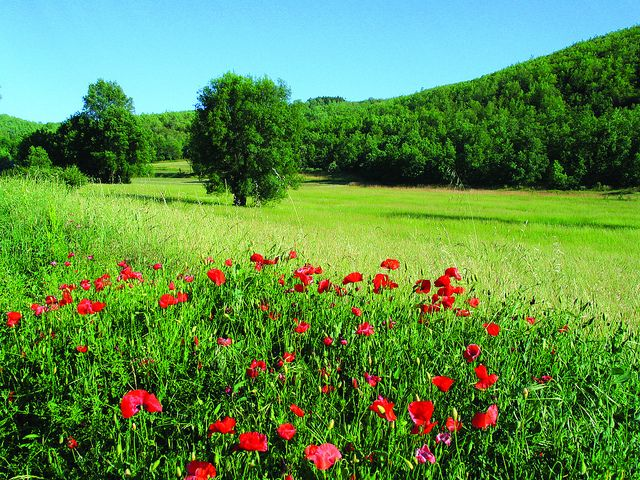Montesinho Natural Park, North Portugal
