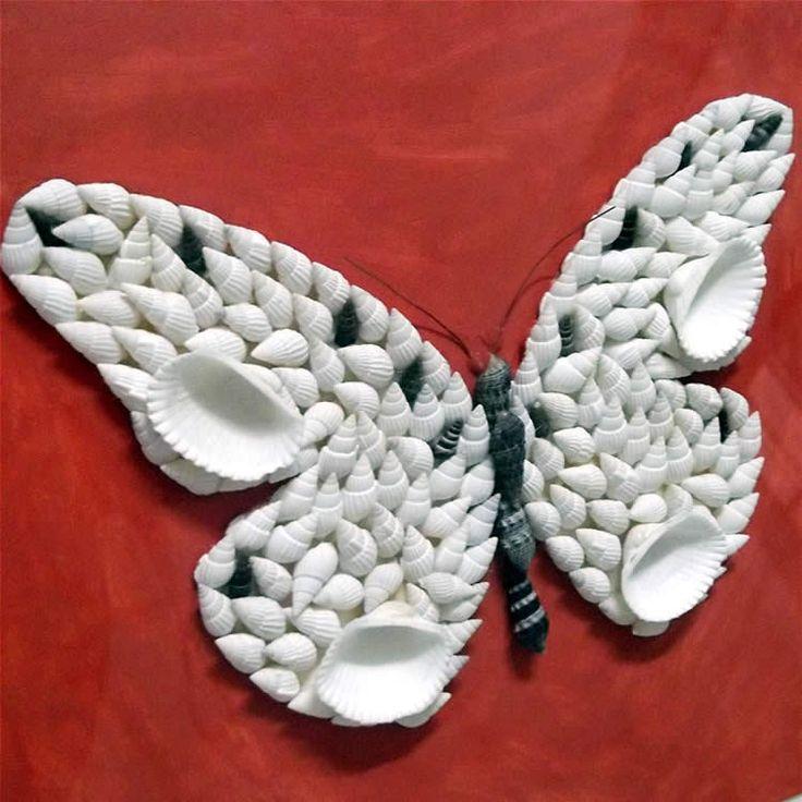 610 Best Images About Stunning Seashells On Pinterest