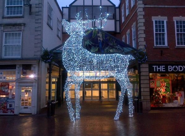 #spaceretail is in the #Christmas spirit after seeing the amazing reindeer @Shop_Shrewsbury at the Darwin Centre!