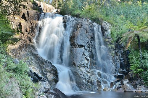 Another spectacular view of the famous Steavensons Falls. Marysville, Victoria, Australia. See much more in the Visit Marysville App.  www.marysvilletourism.com/visit-marysville-apps