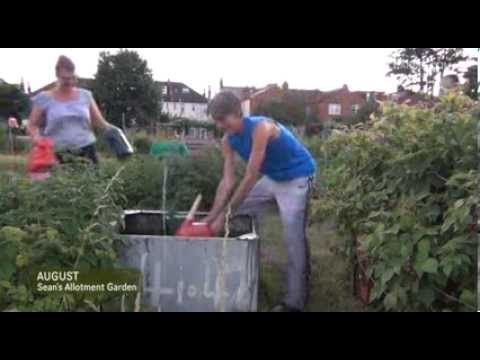 Sean's Kitchen Garden S1 E33: Bad day at the allotments | August 2013 RE-UPLOADED DUE TO FALSE COPYRIGHT CLAIM. Bad day at the allotment! Vivi and Graham drop by to tend to Geoff's plot while he's on holiday and to test homemade homegrown jams and jellies from Sean's kitchen. And after the mishap Sean gets back to tending the raspberries mint and pumpkin patch plus plants in the greenhouse. Tweet this Video  http://ift.tt/2wgeYJx Click Here To Subscribe!  http://full.sc/13UESdc What is an…