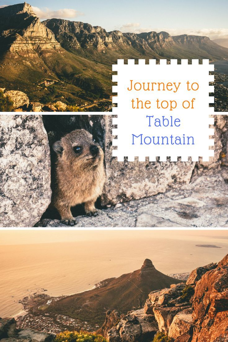 Journey to the top of Table Mountain, Cape Town, South Africa to see a birds-eye view of the city and ocean. For travelers and outdoor lovers