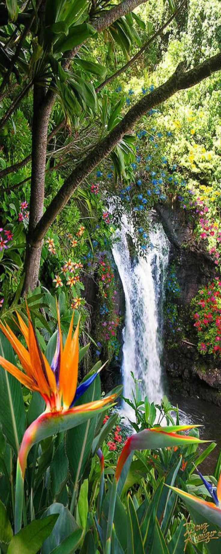 Paradise Falls, Hawaii