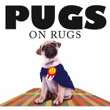 What makes pugs so loveable? Their doleful eyes? Downturned mouths? Furrowed brows? Sad they may look, but they've found their place in the home – on rugs. Pugs on Rugs celebrates 43 different pugs on wholly different rugs. The dog might be walking, sitting, sleeping; the rug could be Persian, Aztec, oriental; guaranteed the image will be cute and funny.