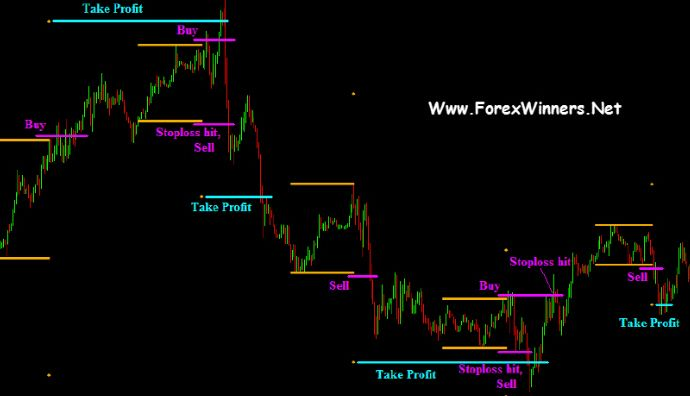 Wall street forex robot free download