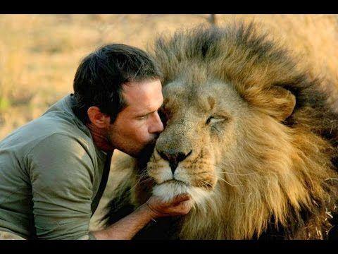 Documentary 2014 - The Amazing Lion Ranger Kevin Richardson - YouTube