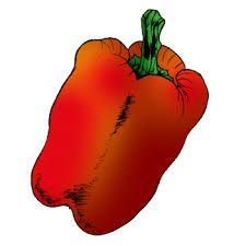 Výsledek obrázku pro zelenina kreslená