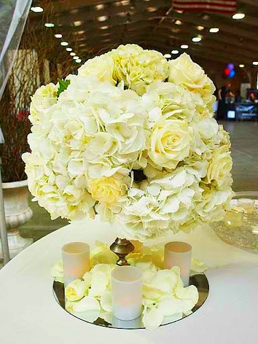 Topiary centerpieces tall mirror and white roses on pinterest
