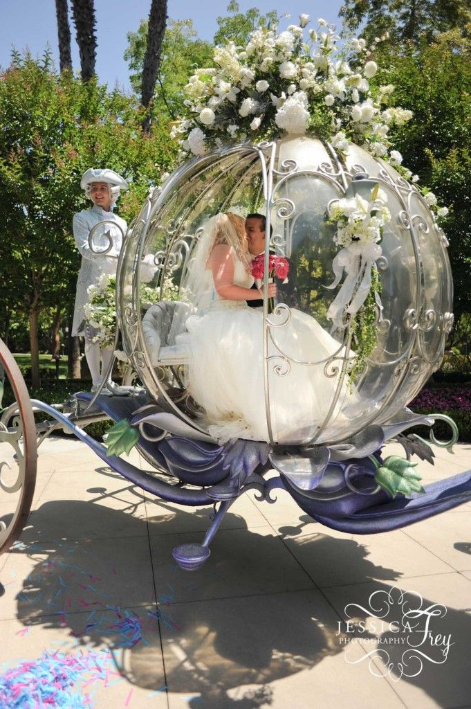 Image result for This couple's gorgeous Disney wedding included Cinderella's carriage
