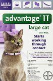 #10: Bayer Advantage II Flea Control Treatment for Cats Large Cat Over 9-Pound 6-Month Pack
