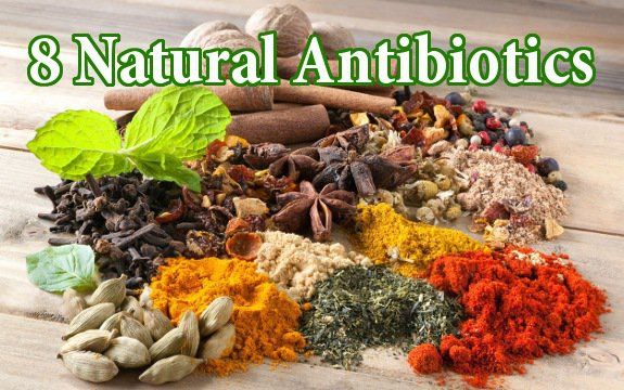 Worried about getting sick? Instead of turning to antibiotics, here are 8+ foods which harness natural antibiotic properties to boost your immune system.