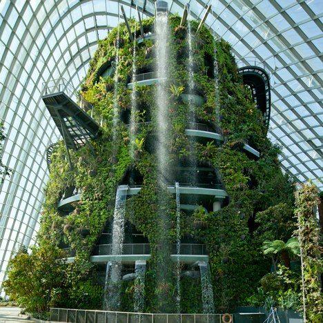 Ein Indoor Garten in Singapur – die Natur in die Wohnung einladen ...