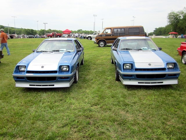 The forgotten Shelby's