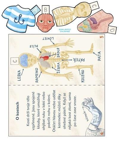 atlas lidského těla 3