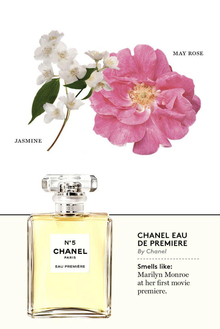 Chanel No. 5 Eau Premiere - The Cut