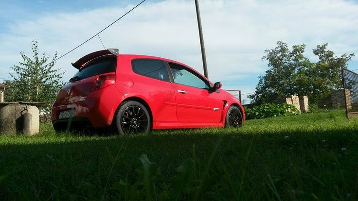 Renault Clio in grass photo...