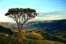 Reservas & Tarifas | Pousada Rosa dos Ventos