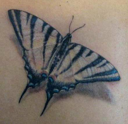 Zebra swallowtail | Tattoos | Pinterest | Zebras
