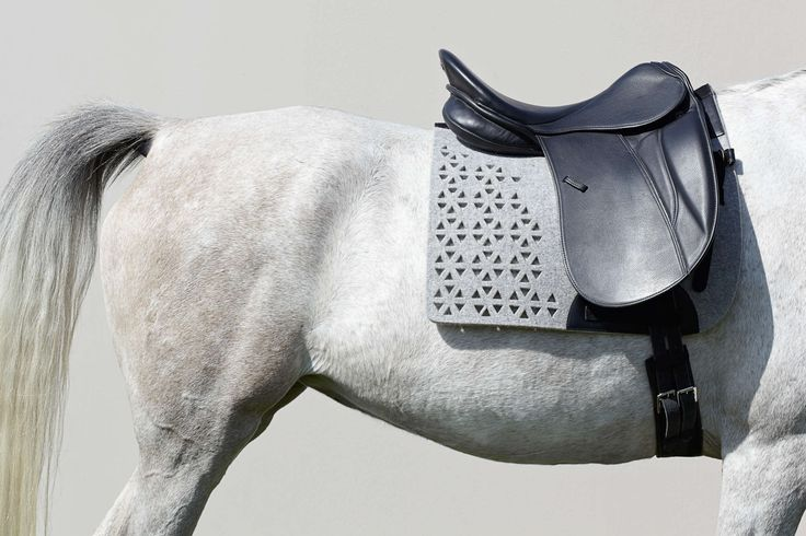 Manifattura Valor   Tramin    Made to order saddle pads and other equine accessories.