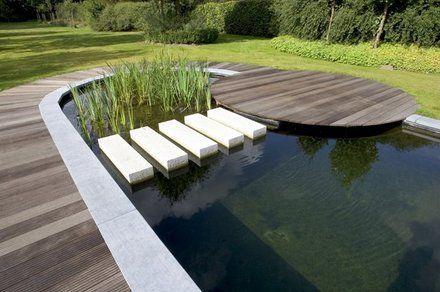 http://images.quebarato.cl/T440x/piscina+ecologica+sin+cloro+santiago+metropolitana+de+santiago+chile__A6F5A3_4.jpg