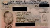 Weird but definitely creative driver's license photo