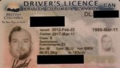 Weird but definitely creative driver's license photo