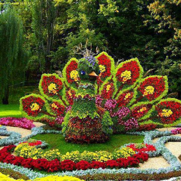 Flower Show in Kiev, Ukraine: