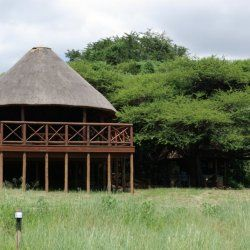 View from the front|Esikhotheni Private Game Reserve