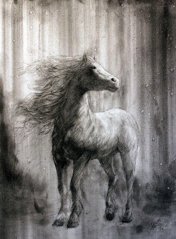 Spirit StallionCharcoal Horse DrawingHorse Art by allartbyjames,