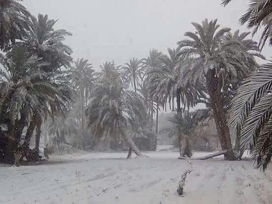 Neige Algérie