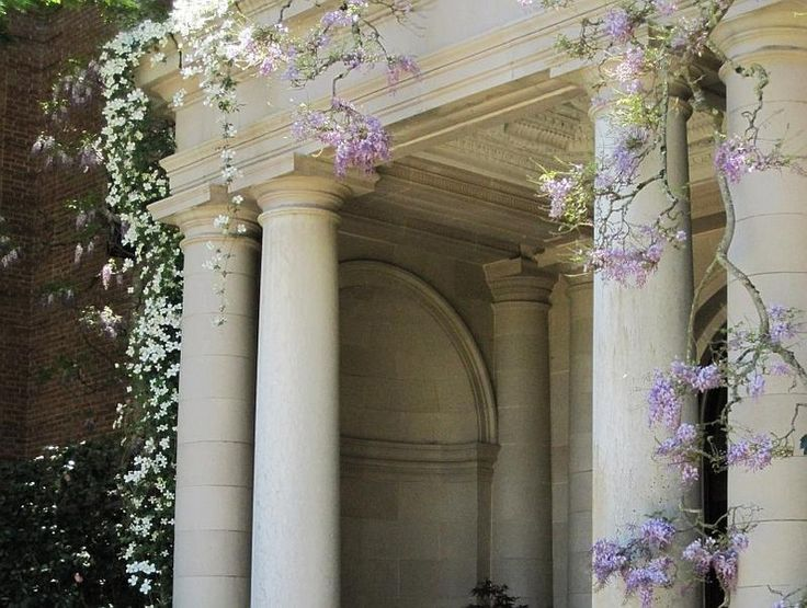 17 Best Images About Garden Arbors Amp Arches On Pinterest