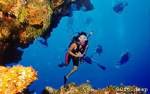 Cozumel diving.  http://www.tourbymexico.com/qroo/cozumel/cozumel.htm