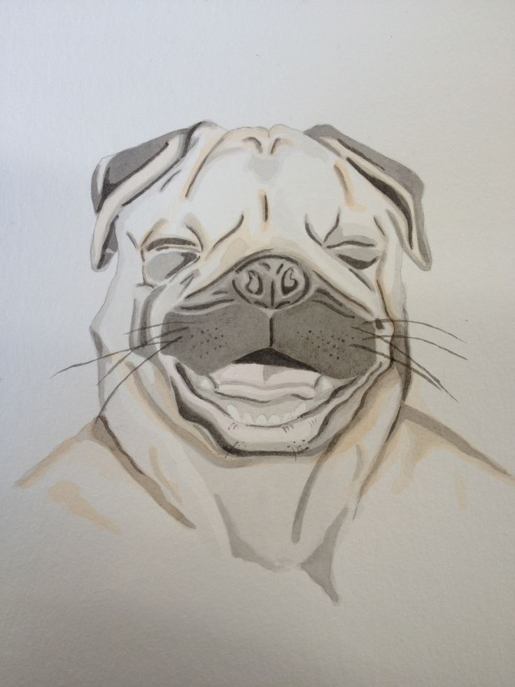 PUG 2013 Pencil and watercolour