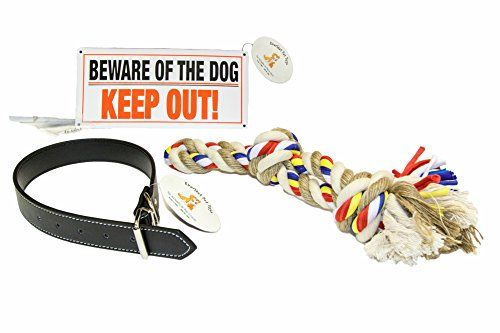 "Everlast Pet Toys | Best Dog Collar & Chew Rope Bundle PLUS For Large Dogs | 24"" x 1.25\"" Adjustable Dog Collar 